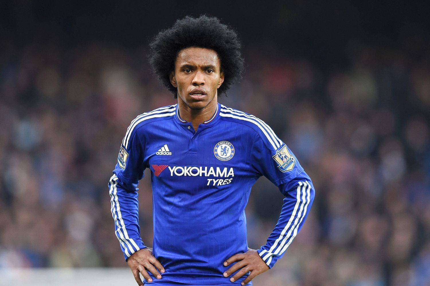 willian - photo #6